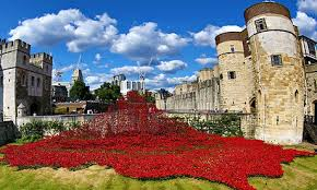 Red ceramic poppies fill the Tower of London moat to commemorate the fallen of the first world war in Paul Cummins' art installation, Blood Swept Lands and Seas of Red. Photograph: Paul Brown/Rex