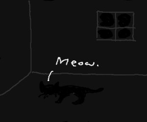 Black Cat in a Dark Room
