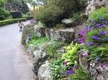 2016-10-24 Wellington Botanic Gardens (42)